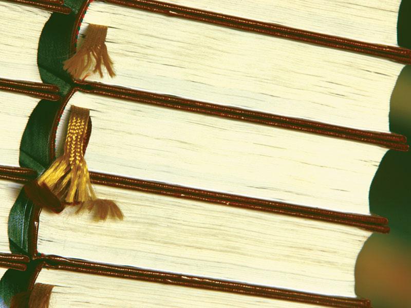 02-ragazzi-advocacia-perfil